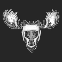 Athletic animal Moose, elk Boxing champion. Print for t-shirt, emblem, logo. Martial arts. Vector illustration with fighter. Sport competition.