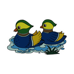 Duck cartoon illustration isolated on white background for children color book