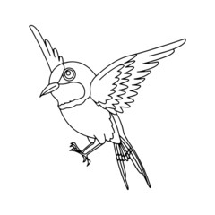 Sparrow cartoon illustration isolated on white background for children color book