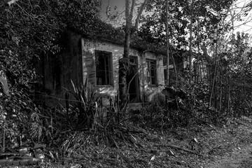 Casa abandonada Wall mural