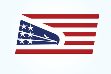 American eagle USA flag logo