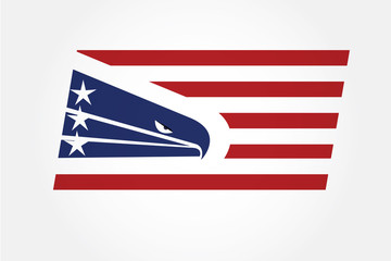 USA American eagle flag
