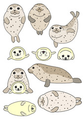 set of seals parent and child