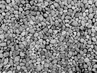 Crushed granite and pebble gravel texture. Black and white concept