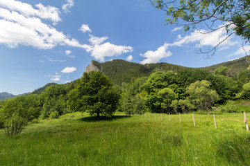 Landscape in mountain with sky,clouds and trees