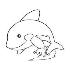 Killer whale cartoon illustration isolated on white background for children color book