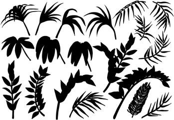 Tropical palm jungle plants silhouettes set