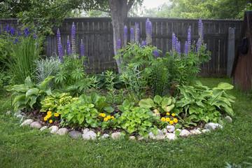 Flowered bed in the garden
