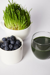fresh drink from spirulina, cups with spirulina grass and blueberries on grey background