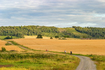 Gravel road with cyclists in a rural landscape