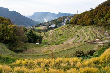 小豆島の中山千枚田(香川県、日本)