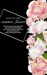 Template for greeting cards, wedding decorations, sales. Vector vertical banner with peonies flowers on black background. Spring or summer design.
