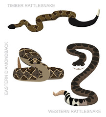 Snake Rattlesnake Set Cartoon Vector Illustration