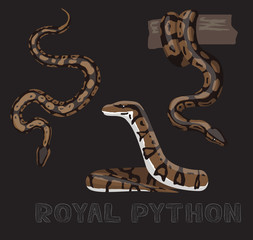 Snake Royal Python Cartoon Vector Illustration