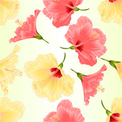 Seamless texture pink and yelow tropical plant hibiscus   on a white background  vintage vector illustration editable hand draw