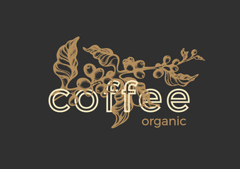 Vector graphic logo. Coffee emblem