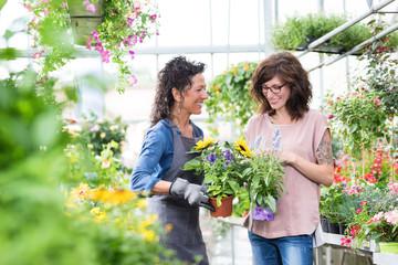 Floristin im Gewächshaus, berät freundlich eine Kundin beim Blumenkauf