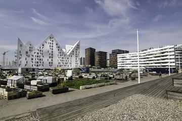 Urban gardening and Modern Architecture