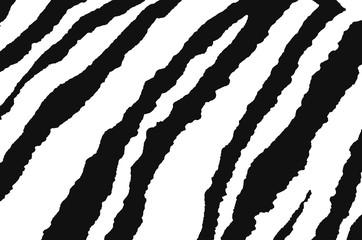 background of zebra black and white