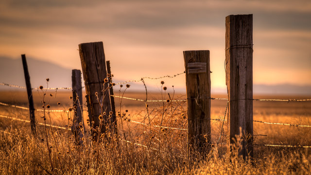 Wooden post barbed wire fence surrounding a field at sunset.