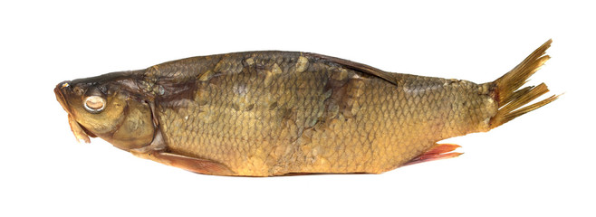 fish smoked on a white background