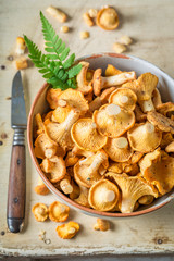 Closeup of raw chanterelles on old wooden rustic background