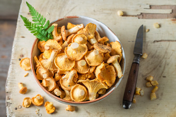 Closeup of healthy chanterelles on old wooden rustic background