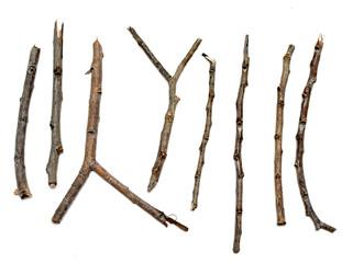 dry branch sticks on a white background