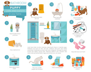 Puppy care and safety in your home. Bathroom. Pet dog training infographic design