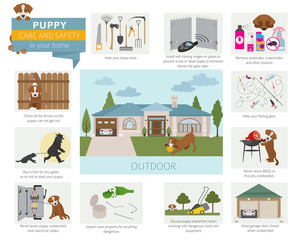 Puppy care and safety in your home. Outdoor. Pet dog training infographic design