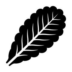 Vegetarian lettuce leaf flat vector icon for vegetable apps and websites
