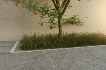 3d rendering of overgrown park space asphalt with grass and apple tree