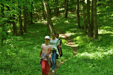 Family hiking trips in the green forest