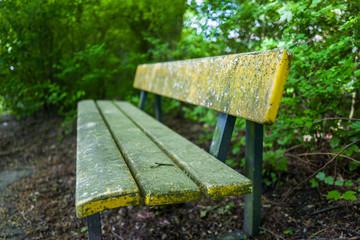 A bench in the Stadtpark in Wilhelmshaven, Germany.