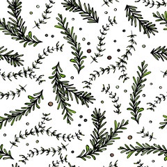 Pepper, Rosemary and Thyme Seamless Endless Vector Background. Fresh Green Herbs for Meat, Steak or Seafood Cooking. Hand Drawn Illustration. Doodle Style.
