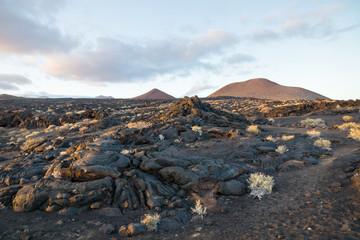 Lava fields at sunset with rocks and lava streams, La Restinga, El Hierro, Canary Islands, Spain
