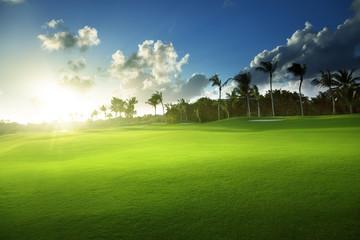 spring grass, golf field