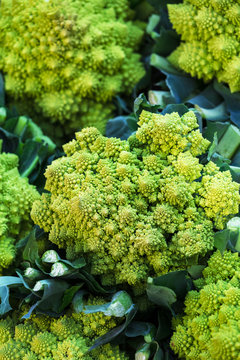 cauliflower romanesco in street market