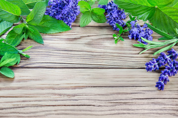 Healing herbs and wooden background
