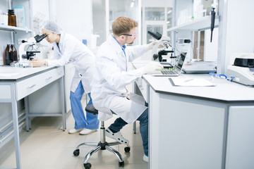 Side view of male microbiologist in glasses sitting at desk using laptop and holding hand on microscope with food samples with assistant looking at microscope eyepiece on background .