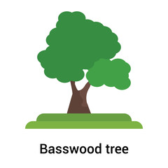 Basswood tree icon vector sign and symbol isolated on white background, Basswood tree logo concept