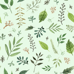watercolor herbs and leaves hand painted seamless pattern on a green background