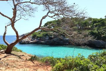 Urlaub am Meer mit traumhaften Wasser und Küsten