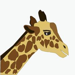 Cute Giraffe in cartoon style, vector art and illustration.
