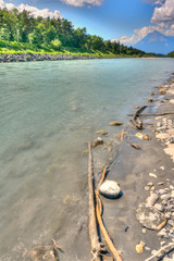 Wall Mural - Rhine River banks with rocky beach and driftwood and forest and mountain landscape in the background