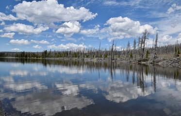 Reflections in Yellowstone Lake