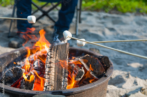 Young Adults Roasting Marshmallows Over Outdoor Campfire