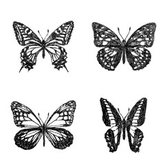 クレヨンで描いたアゲハチョウ