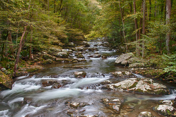 Early fall river shot in the Smokeys