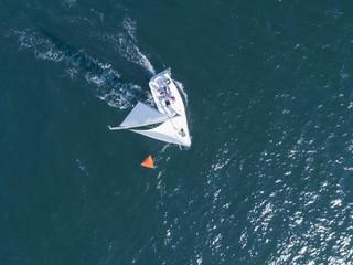風を受け海を渡るヨット
